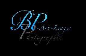 BP Art Images Photographie Sourzac